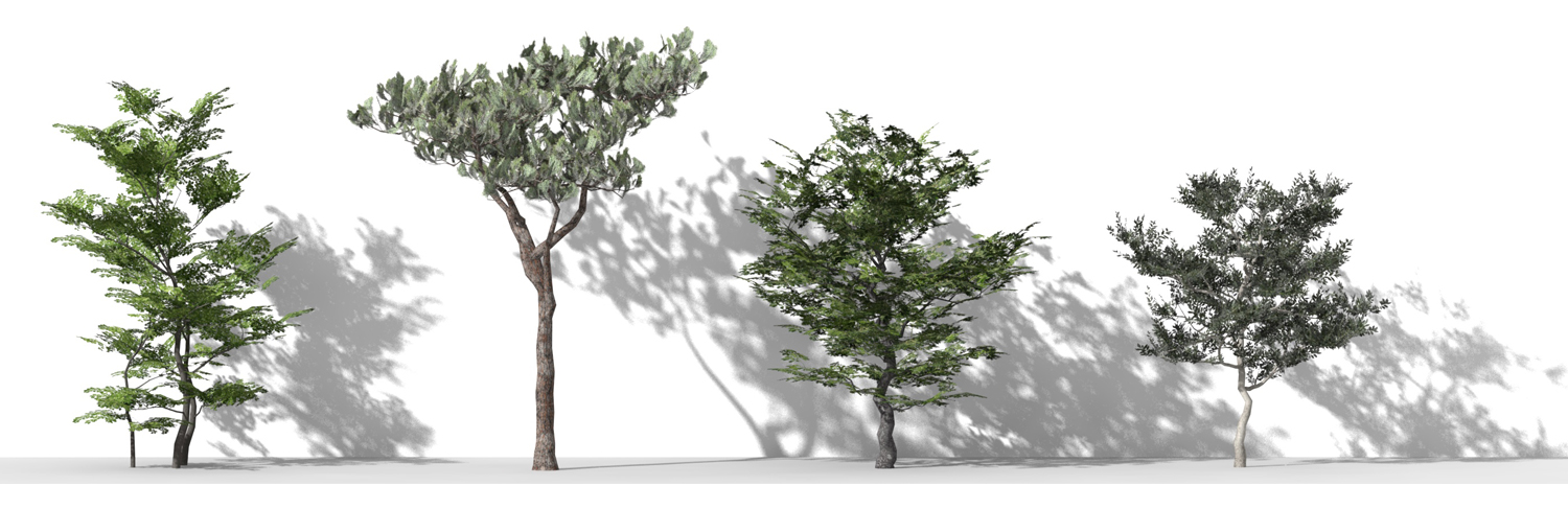 3D Parametric Plants - Volume 04
