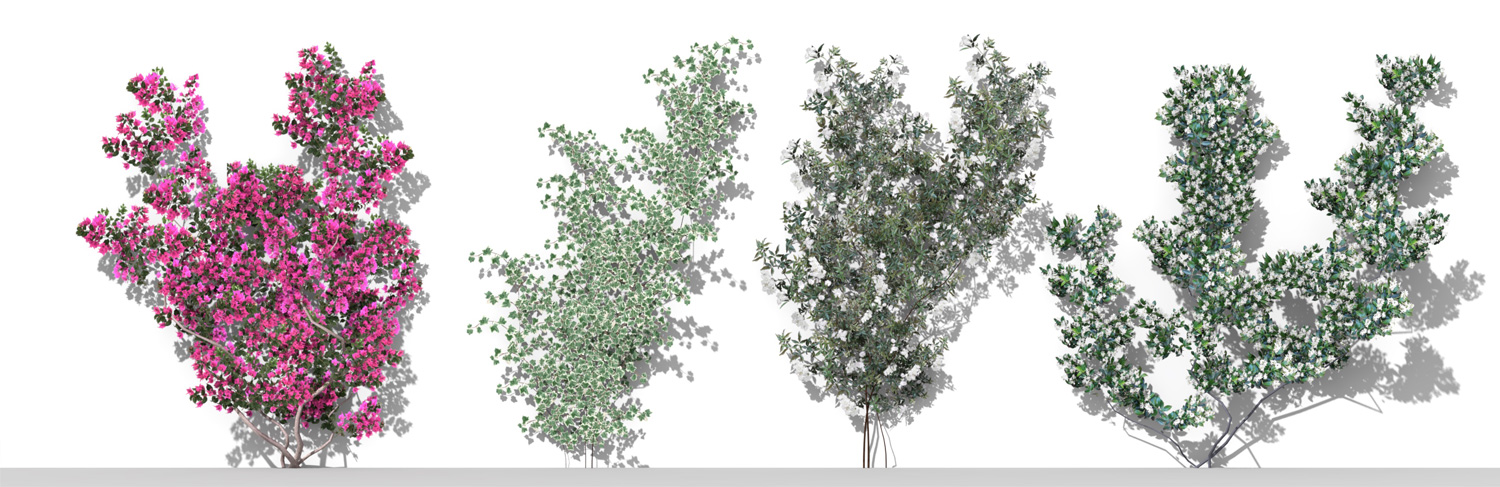 3D Parametric Plants - Volume 05