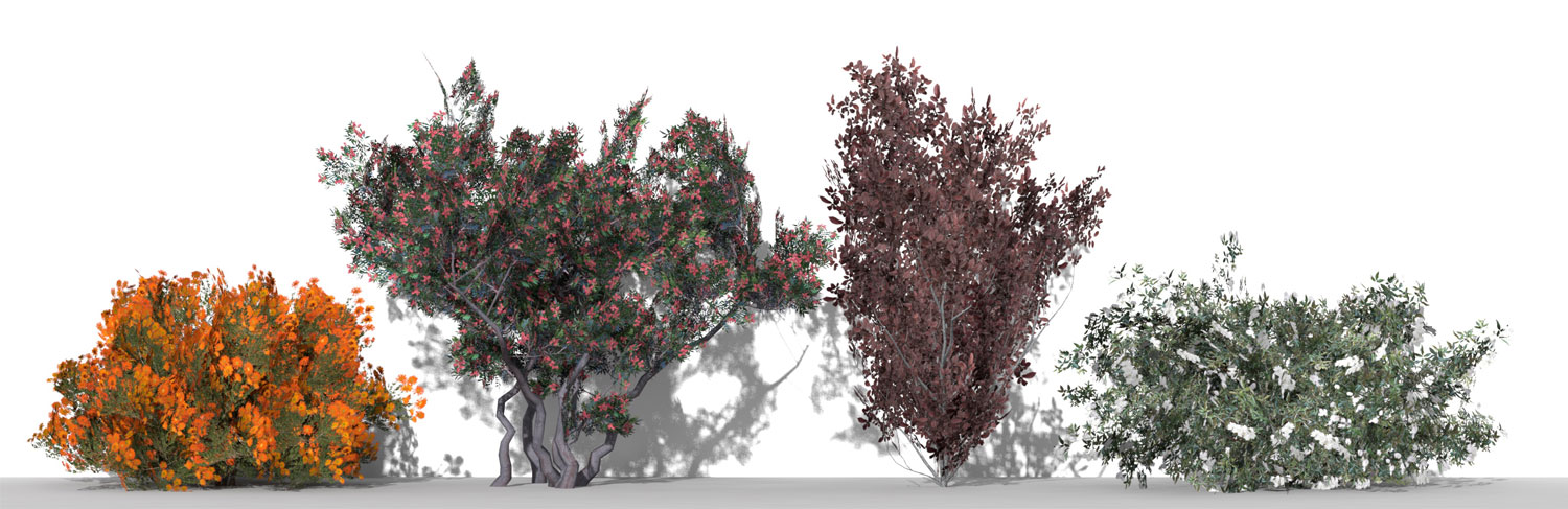 3D Parametric Plants - Volume 07