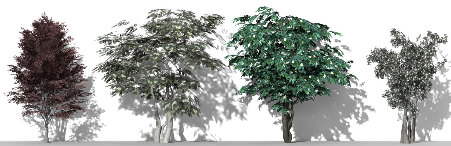 3D Parametric Plants - Volume 10