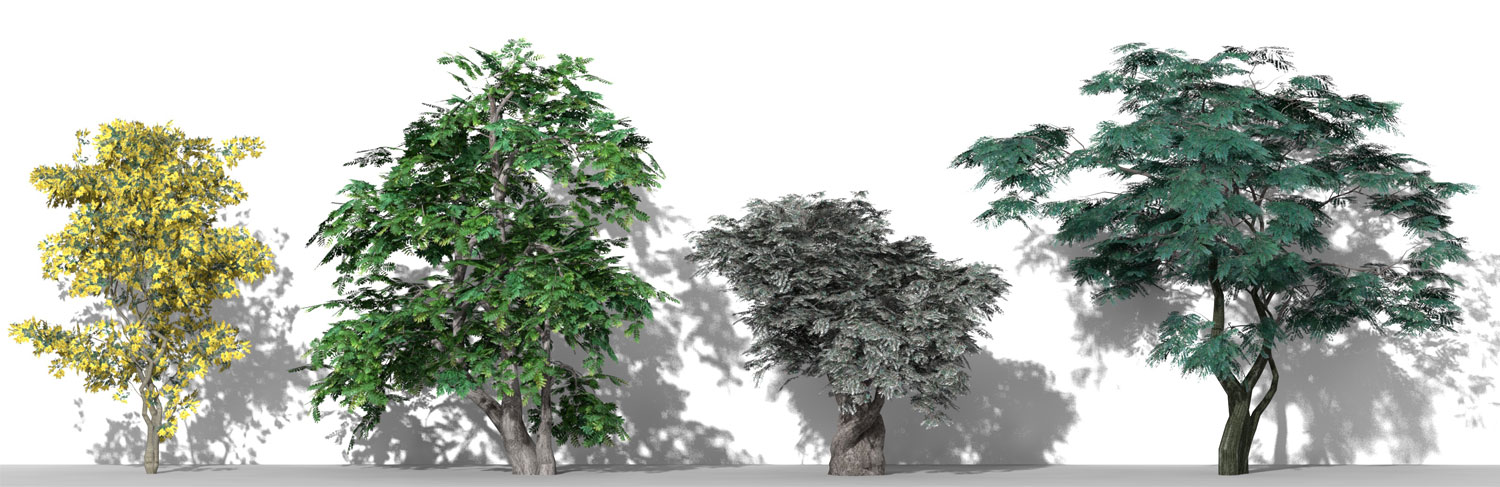 3D Parametric Plants - Volume 11