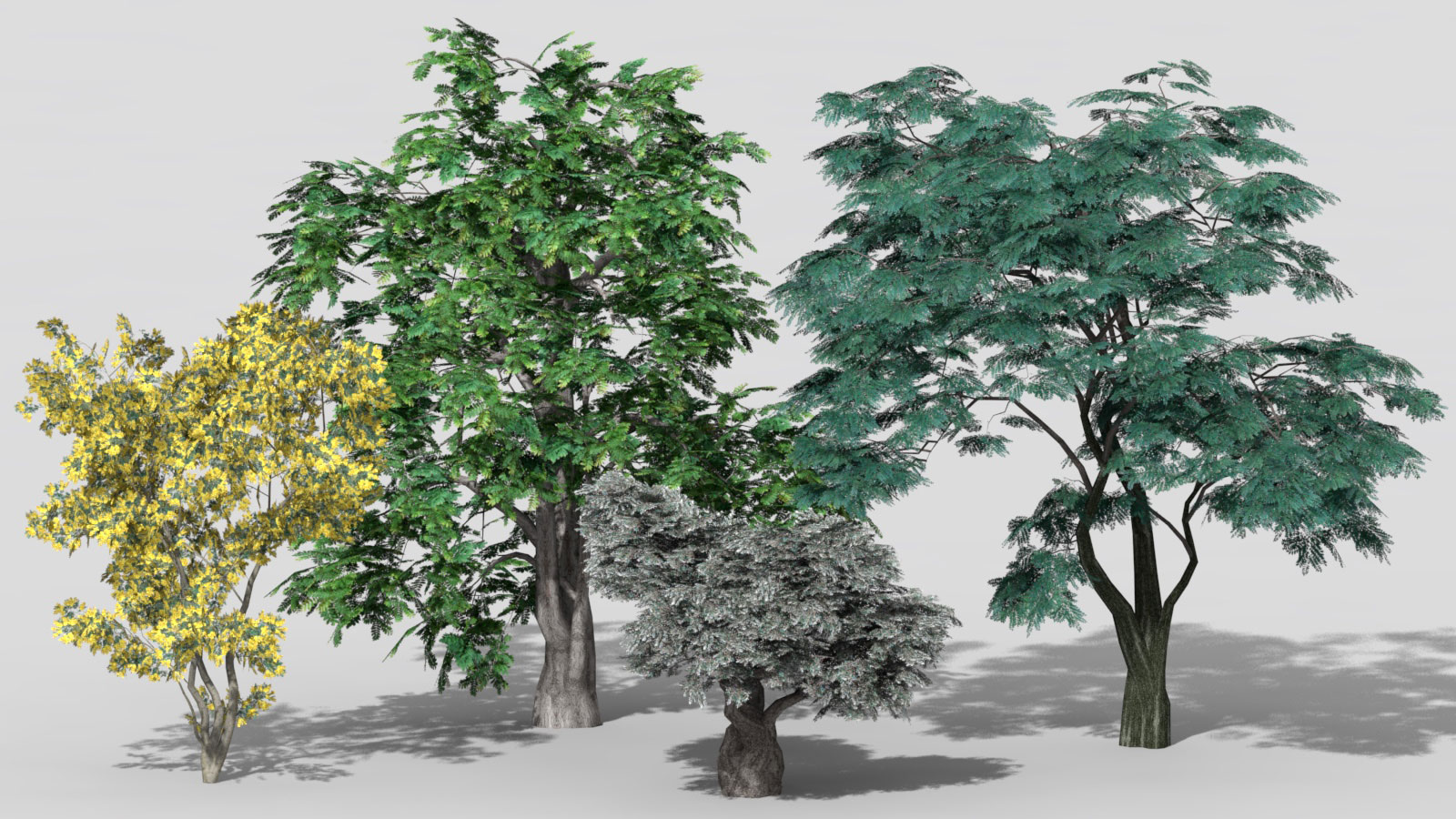 3D 2D Parametric Plants 07 news