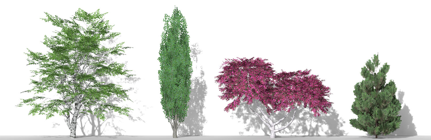 3D Parametric plants - volume 12