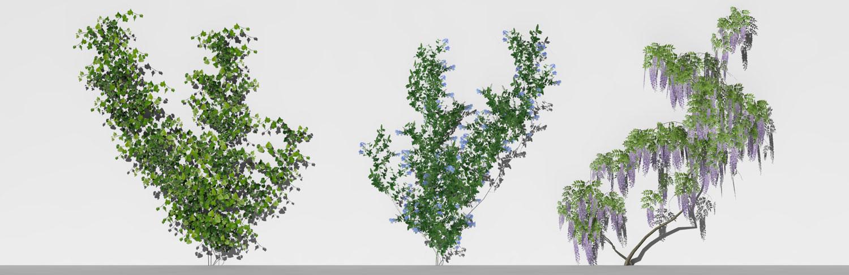Piante 3D parametriche - Volume 01