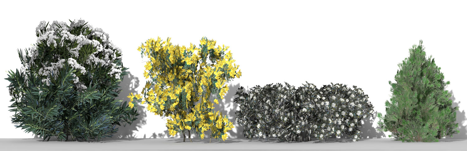 3D Parametric Plants - Volume 09