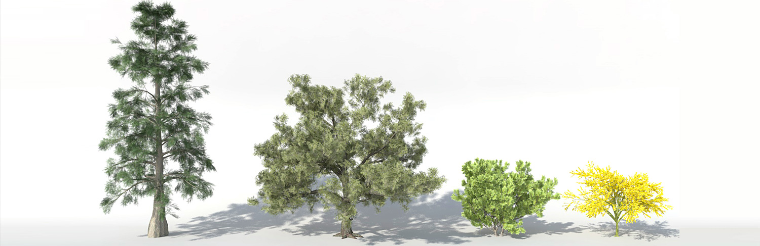 ArchiRADAR trees volume 11