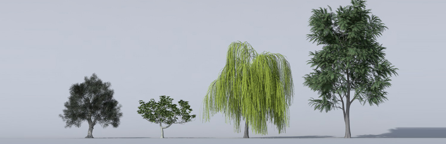 Archiradar trees collection 14