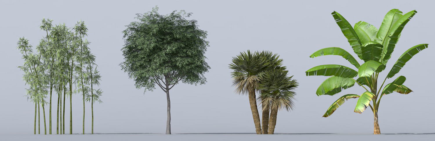Archiradar trees collection 16
