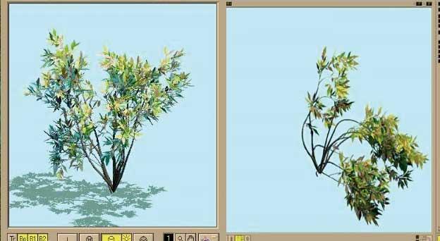 Creare alberi 3d per artlantis con onyxtree for Programma 3d semplice